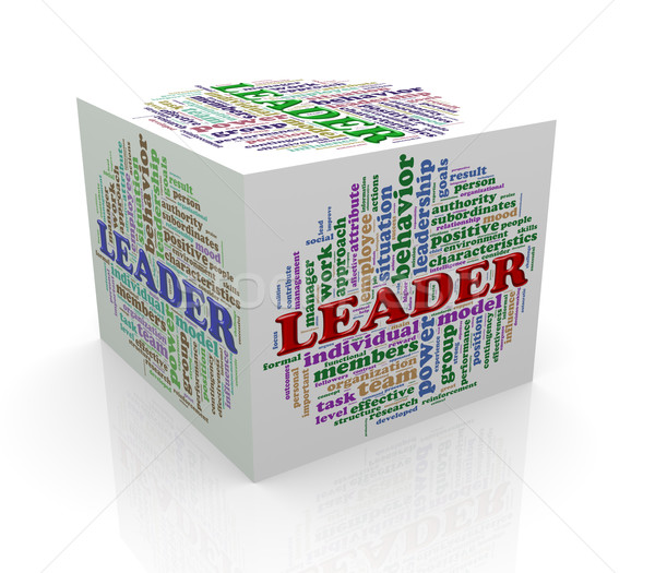 3d cube word tags wordcloud of leader Stock photo © nasirkhan