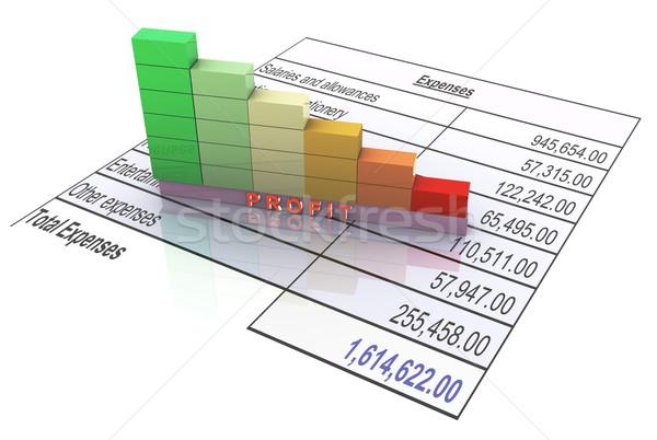 Növekedés kiadások 3D rácsok mutat csökkenés Stock fotó © nasirkhan