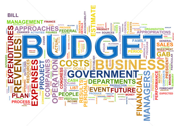 Budget word tags Stock photo © nasirkhan