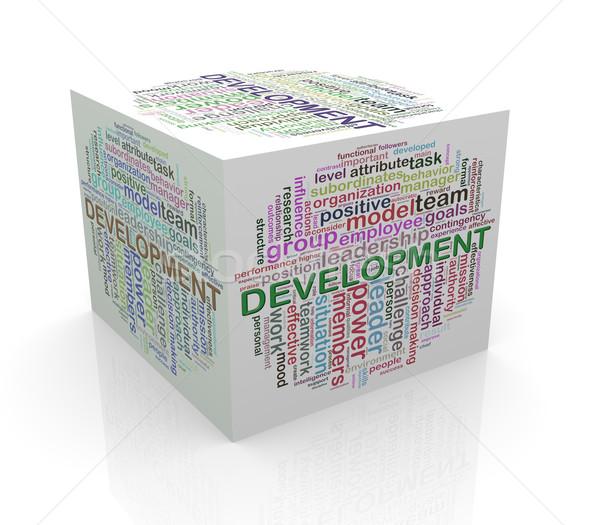 ストックフォト: 3D · キューブ · 言葉 · 開発
