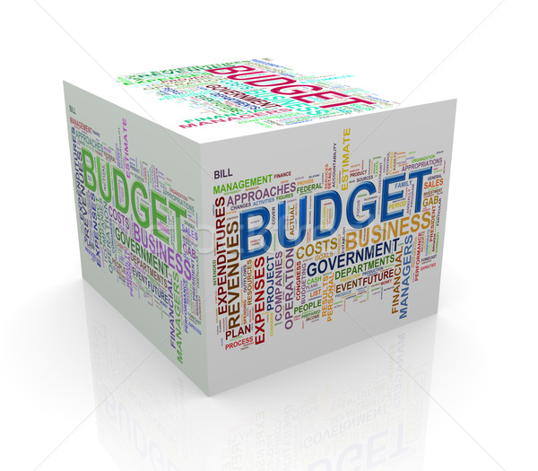 3d cube word tags wordcloud of budget Stock photo © nasirkhan