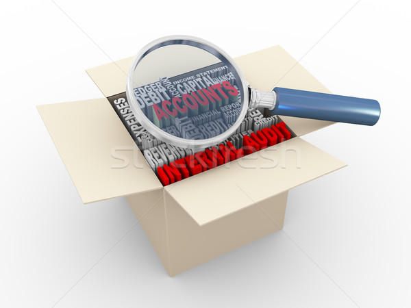 3d magnifier and internal audit wordcloud box Stock photo © nasirkhan
