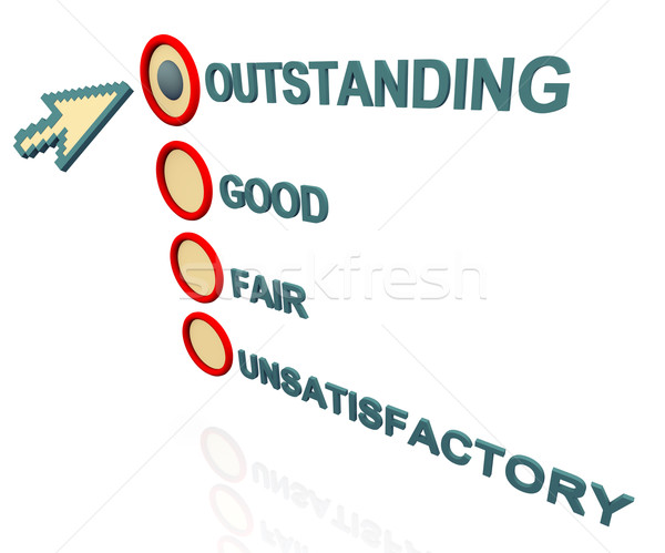 3d survey rating Stock photo © nasirkhan