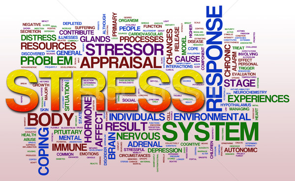 Stress illustrazione word cloud salute web Foto d'archivio © nasirkhan