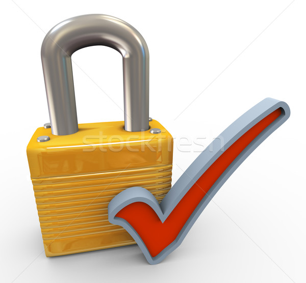 Concept of successful security Stock photo © nasirkhan
