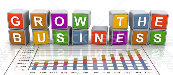 3d buzzword text 'grow the business' Stock photo © nasirkhan