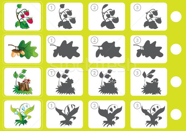 Combinar sombra educação quebra-cabeça crianças livro Foto stock © Natali_Brill