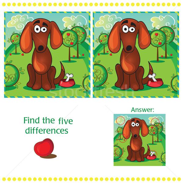 Foto stock: Encontrar · diferenças · dois · engraçado · cão