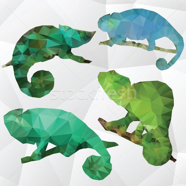 Vettore arte illustrazione camaleonte multicolore design Foto d'archivio © Natali_Brill