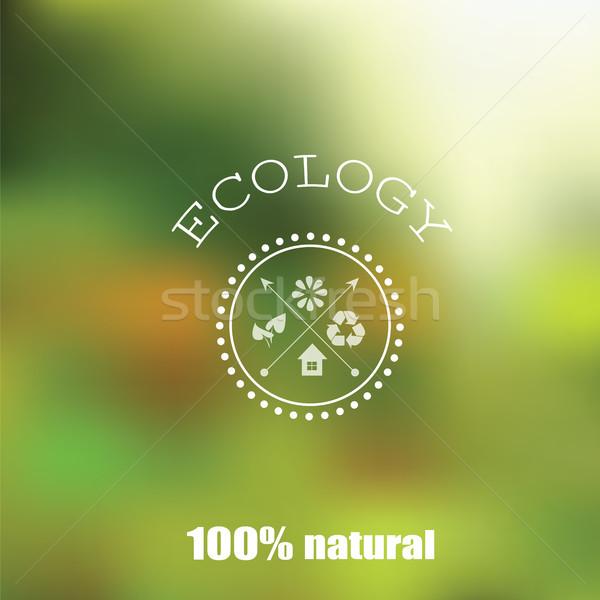 Vector blurred landscape Stock photo © Natali_Brill