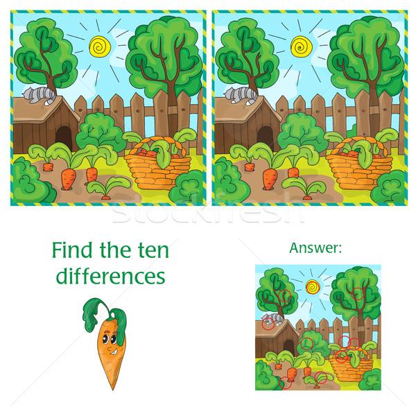 Trovare differenze due immagini carote giardino Foto d'archivio © Natali_Brill