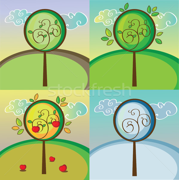 Stockfoto: Boom · vier · verschillend · seizoenen · voorjaar · zomer