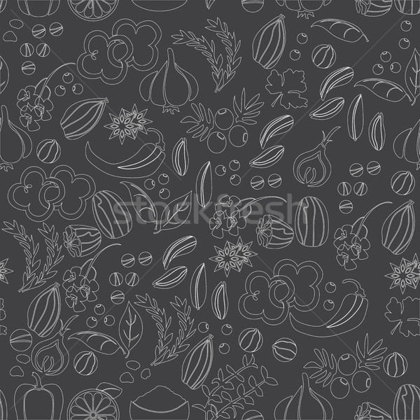 Pattern with hand drawn spices and herbs. Medicinal, cosmetic, culinary plants Stock photo © Natali_Brill