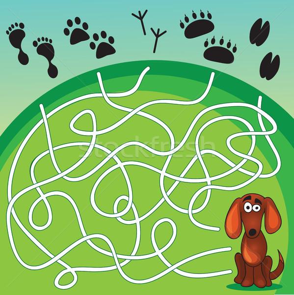 Bonitinho cães jogo ajudar cão encontrar Foto stock © Natali_Brill