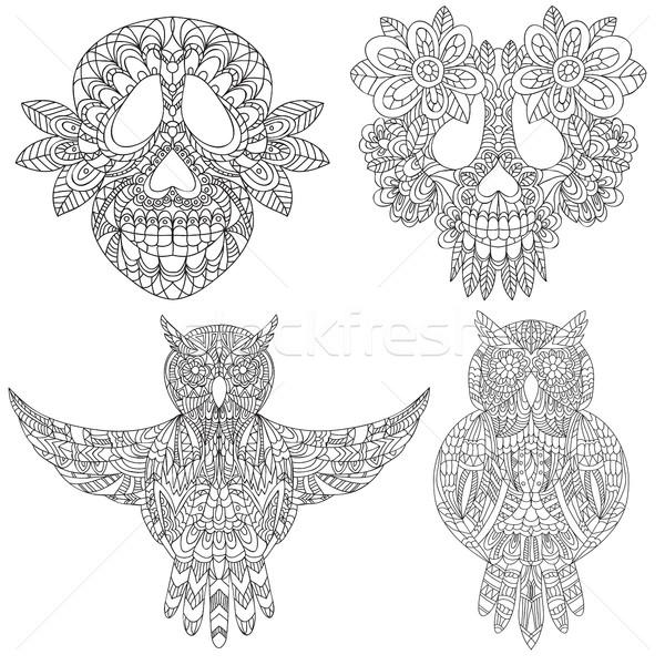 Owl and skull sketchs Stock photo © Natali_Brill