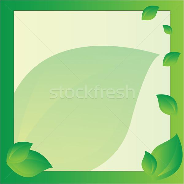 フレーム デザイン ベクトル 明るい 緑 ビジネス ストックフォト © Natali_Brill