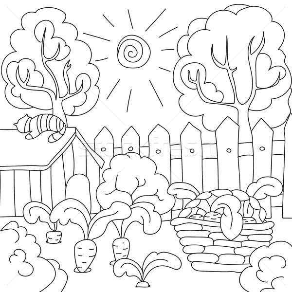 Vektör Boyama Kitabı Havuç Bahçe çocuklar Vektör