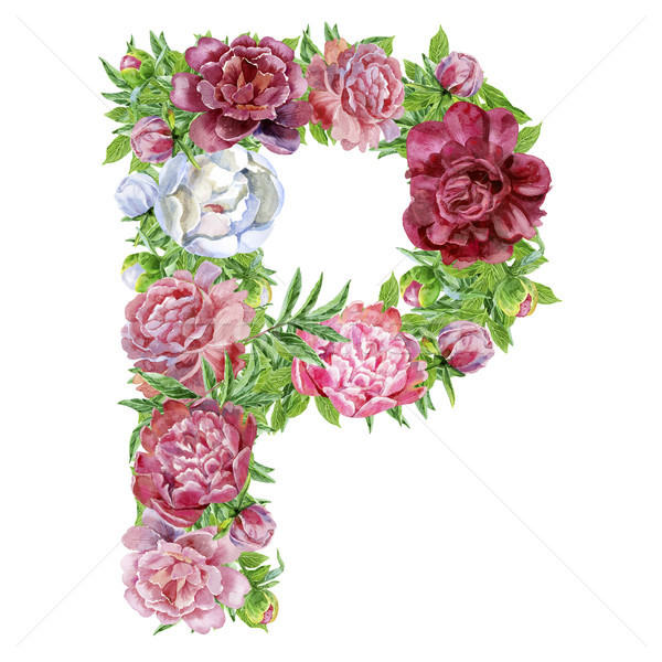 Letter P of watercolor flowers Stock photo © Natalia_1947