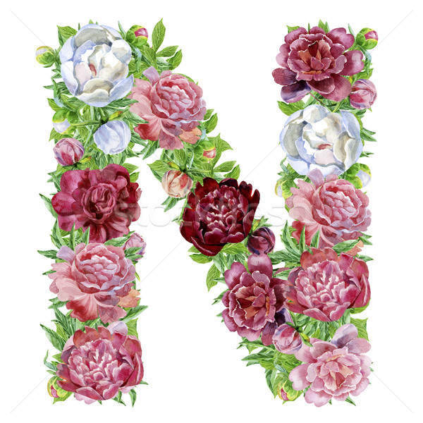 Letter N of watercolor flowers Stock photo © Natalia_1947
