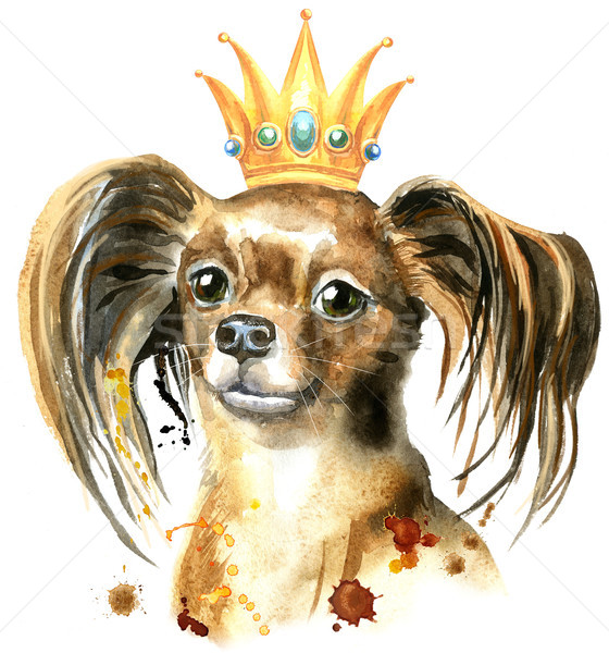 Watercolor portrait of long-haired toy terrier with a crown on his head Stock photo © Natalia_1947