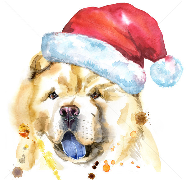 Watercolor portrait of chow-chow dog with Santa hat Stock photo © Natalia_1947
