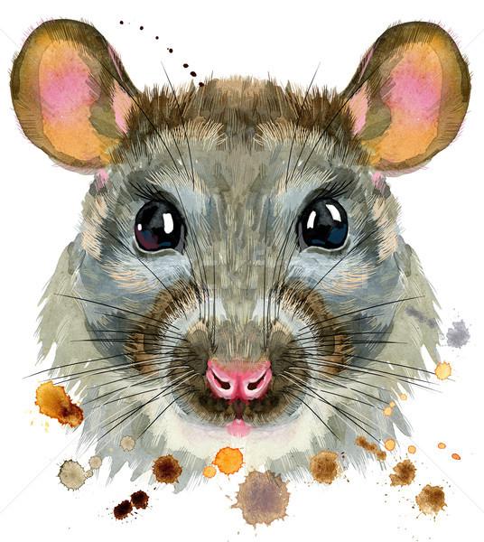 Aquarel portret rat spatten cute tshirt Stockfoto © Natalia_1947