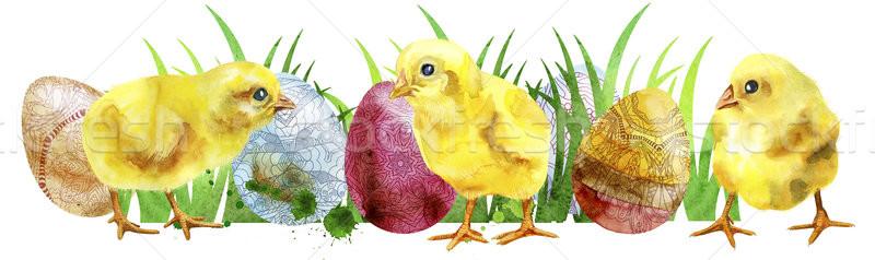 Aquarel Pasen gekleurde eieren groen gras witte Stockfoto © Natalia_1947