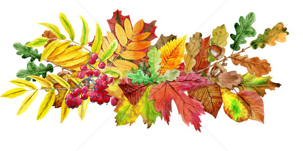 Stock photo: Composition of autumn leaves. Greeting postcard invite decorative copy space