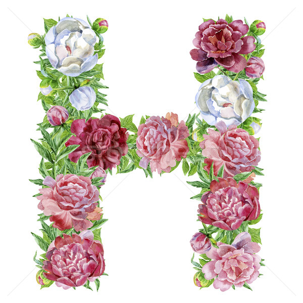 Letter H of watercolor flowers Stock photo © Natalia_1947