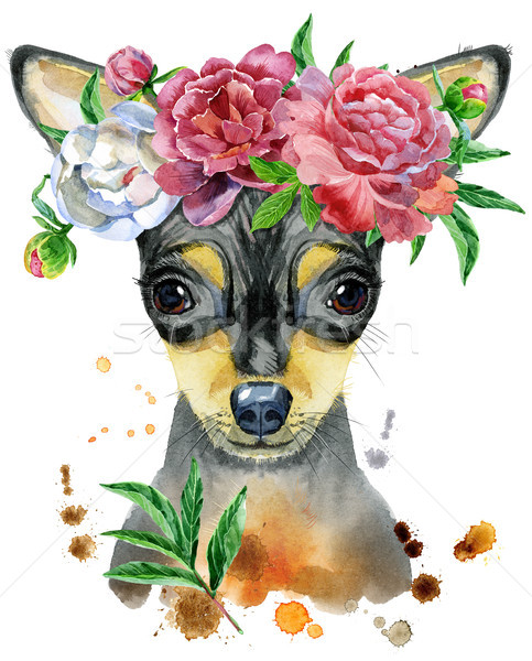 Watercolor portrait of toy terrier with flower Stock photo © Natalia_1947