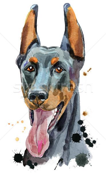 акварель портрет доберман Cute собака футболки Сток-фото © Natalia_1947