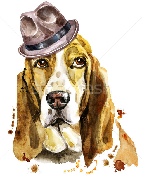 Watercolor portrait of basset hound in a brown hat Stock photo © Natalia_1947