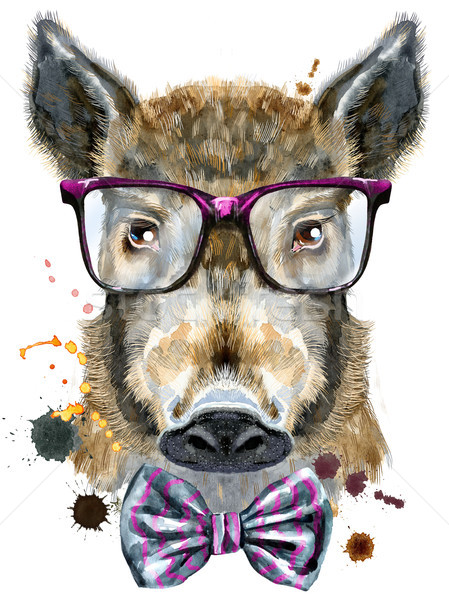 Watercolor portrait of wild boar with glasses and a bow tie Stock photo © Natalia_1947
