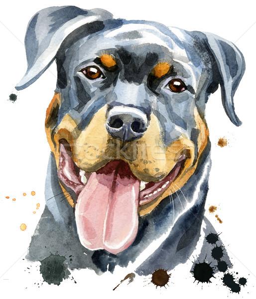 Akwarela portret rottweiler cute psa tshirt Zdjęcia stock © Natalia_1947