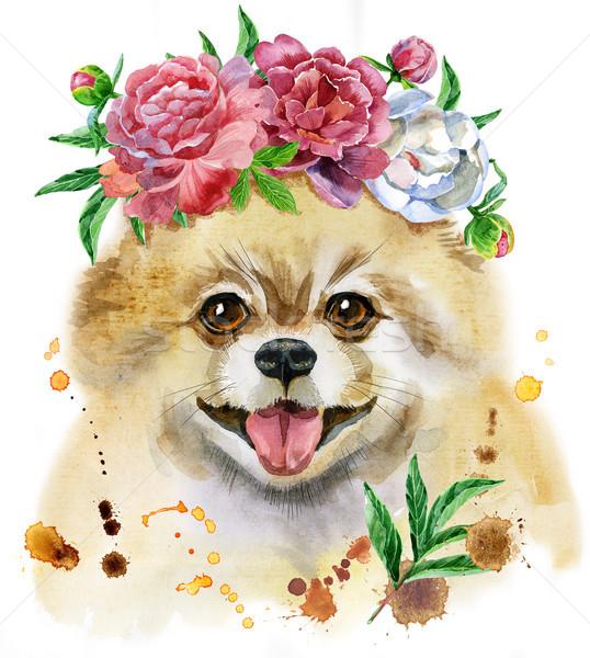 Watercolor portrait of dog pomeranian spitz with flowers Stock photo © Natalia_1947