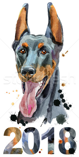 Watercolor portrait doberman Stock photo © Natalia_1947