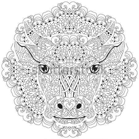 Mandala Sayfa Vektör Yetişkin Boyama Kitabı Vektör