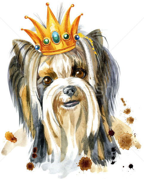 Watercolor Portrait Of Yorkshire terrier breed dog with a crown on his head Stock photo © Natalia_1947