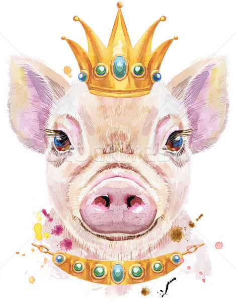Watercolor portrait of mini pig with crown Stock photo © Natalia_1947