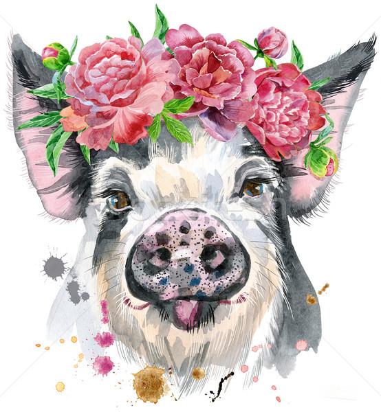 Watercolor portrait of pig Stock photo © Natalia_1947