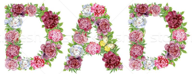 Kelime baba suluboya çiçekler yalıtılmış Stok fotoğraf © Natalia_1947
