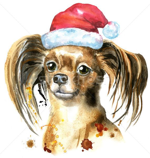 Watercolor portrait of long-haired toy terrier with Santa hat Stock photo © Natalia_1947