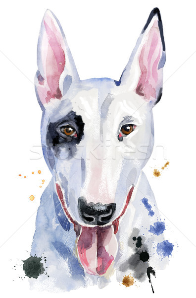 Watercolor portrait of bull terrier Stock photo © Natalia_1947