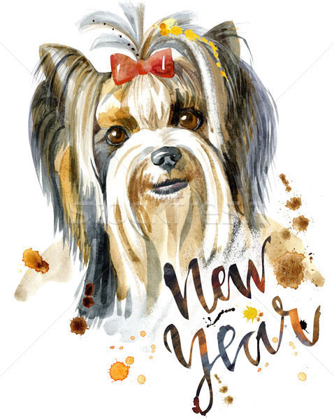 Watercolor Portrait Of Yorkshire Terrier Breed Dog. Stock photo © Natalia_1947