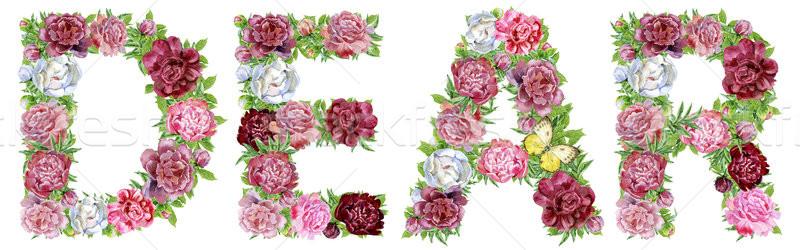 Palabra acuarela flores aislado dibujado a mano blanco Foto stock © Natalia_1947