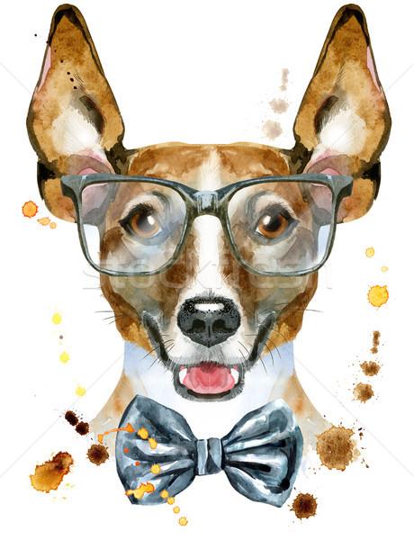 Couleur pour aquarelle portrait jack russell terrier verres cute chien Photo stock © Natalia_1947