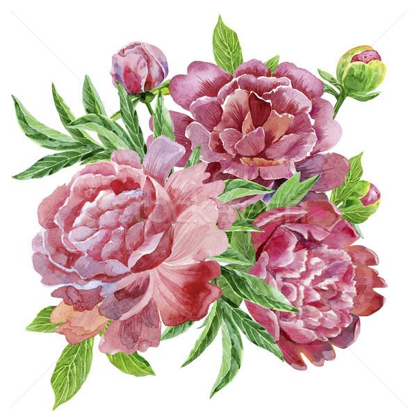 Watercolor bouquet of peonies Stock photo © Natalia_1947