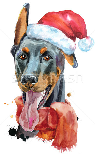 Watercolor portrait doberman with Santa hat Stock photo © Natalia_1947