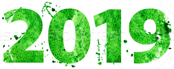 New year 2019 in green color Stock photo © Natalia_1947
