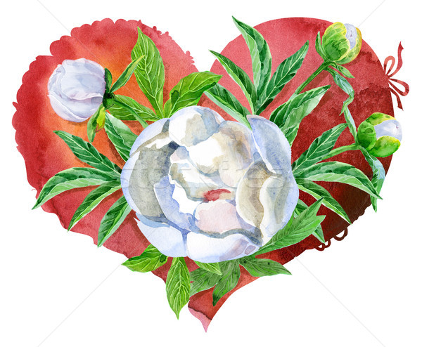 watercolor red heart with white peonies Stock photo © Natalia_1947